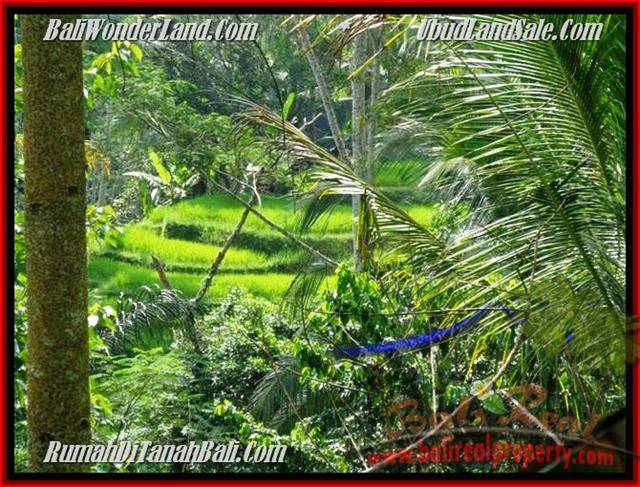 Magnificent PROPERTY 725 m2 LAND FOR SALE IN Ubud Tegalalang TJUB495