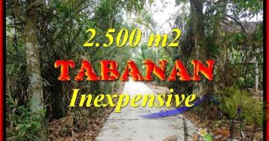 Magnificent TABANAN BALI 2,500 m2 LAND FOR SALE TJTB160