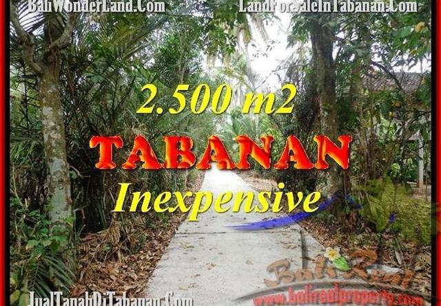 Magnificent TABANAN BALI 2,500 m2 LAND FOR SALE TJTB160