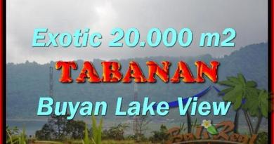 FOR SALE 20,000 m2 LAND IN TABANAN TJTB163