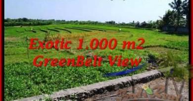 Exotic Canggu Pererenan LAND FOR SALE TJCG184