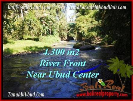 Magnificent PROPERTY UBUD LAND FOR SALE TJUB499