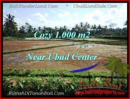 Exotic LAND SALE IN Sentral Ubud BALI TJUB501