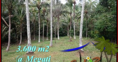 FOR SALE Magnificent LAND IN Tabanan Selemadeg BALI TJTB211