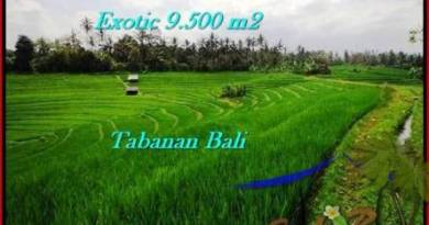 Affordable Tabanan Selemadeg BALI LAND FOR SALE TJTB210