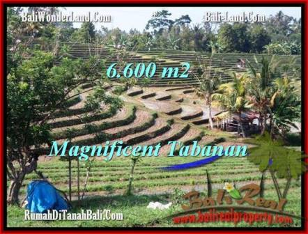 Magnificent 6,600 m2 LAND IN TABANAN BALI FOR SALE TJTB204