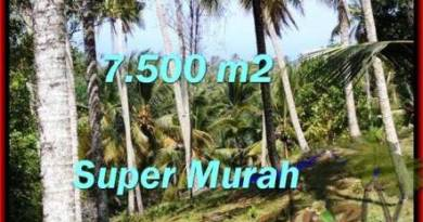 FOR SALE Exotic PROPERTY 7,500 m2 LAND IN TABANAN BALI TJTB207
