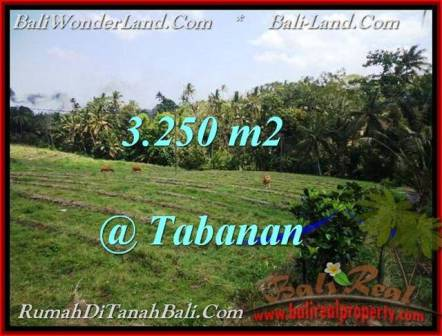 Beautiful TABANAN BALI 3,250 m2 LAND FOR SALE TJTB208