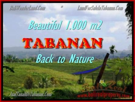 Affordable PROPERTY LAND FOR SALE IN TABANAN TJTB155