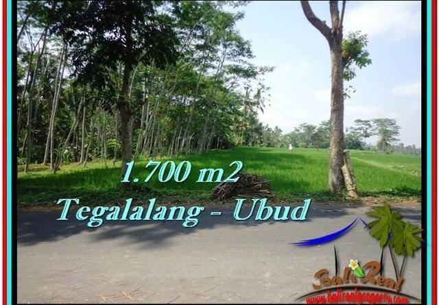 FOR SALE Exotic LAND IN Ubud Tegalalang BALI TJUB518