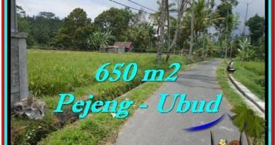 FOR SALE Beautiful PROPERTY LAND IN UBUD TJUB522