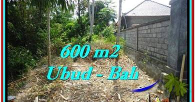 600 m2 LAND FOR SALE IN UBUD BALI TJUB523