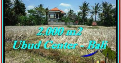 Affordable 2,000 m2 LAND IN UBUD BALI FOR SALE TJUB524