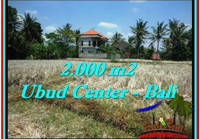 Affordable 2,000 m2 LAND IN UBUD BALI FOR SALE TJUB524