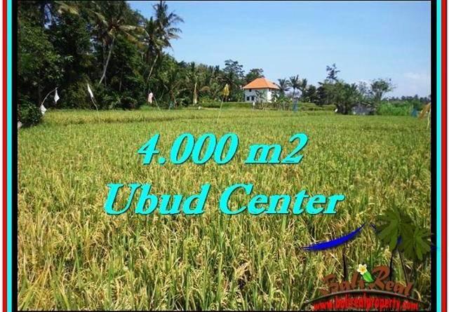 FOR SALE Beautiful 4,000 m2 LAND IN UBUD BALI TJUB527
