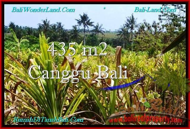 Magnificent PROPERTY 435 m2 LAND FOR SALE IN CANGGU BALI TJCG196