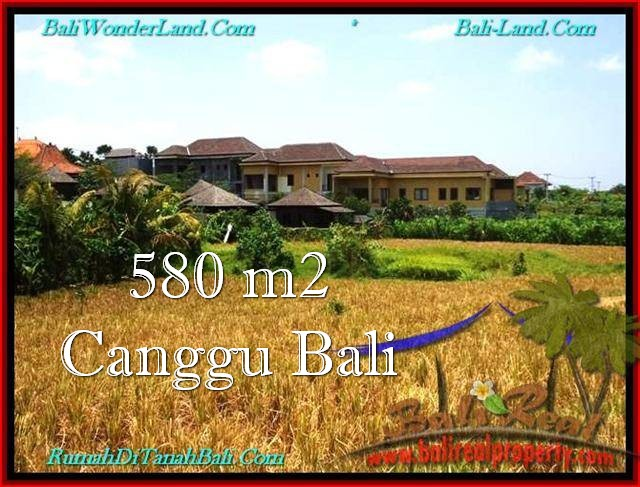 Affordable PROPERTY 580 m2 LAND SALE IN CANGGU TJCG197