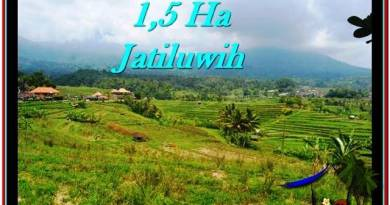 Exotic PROPERTY 15,000 m2 LAND FOR SALE IN Tabanan Penebel TJTB225