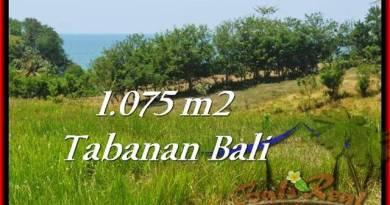 Tabanan Selemadeg BALI LAND FOR SALE TJTB230