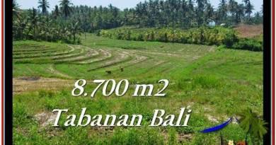 Beautiful LAND FOR SALE IN TABANAN TJTB233