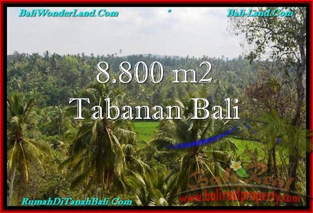 Affordable 8,800 m2 LAND FOR SALE IN TABANAN BALI TJTB238