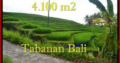 Magnificent TABANAN BALI 4,100 m2 LAND FOR SALE TJTB239