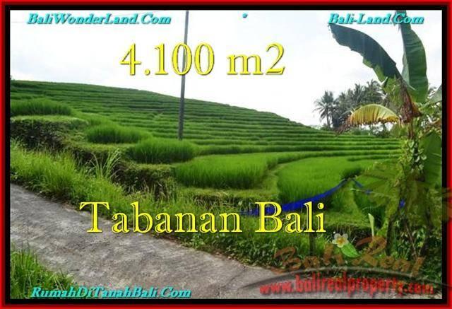 FOR SALE 4,100 m2 LAND IN TABANAN TJTB239