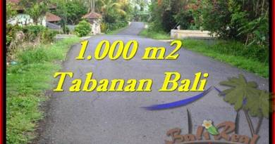 Affordable PROPERTY LAND FOR SALE IN TABANAN TJTB243