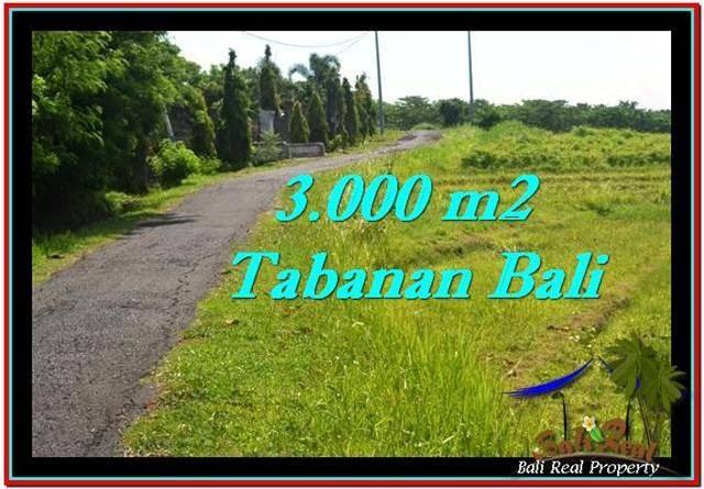 Magnificent TABANAN BALI 3,000 m2 LAND FOR SALE TJTB246