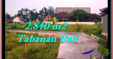 FOR SALE Exotic LAND IN Tabanan Tanah Lot BALI TJTB247