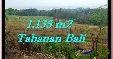 Exotic TABANAN BALI 1,135 m2 LAND FOR SALE TJTB253
