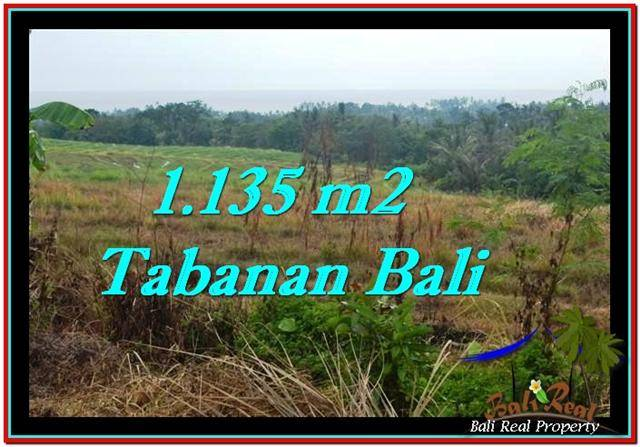 Beautiful PROPERTY Tabanan Selemadeg 1,135 m2 LAND FOR SALE TJTB253