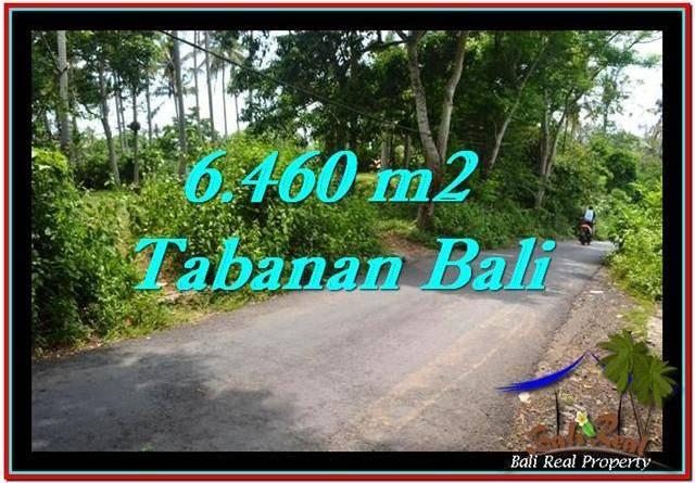 Beautiful 6,460 m2 LAND SALE IN TABANAN BALI TJTB256