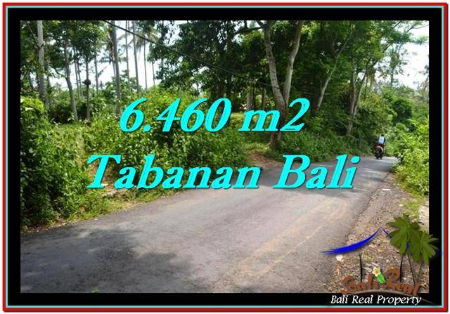 Affordable 6,460 m2 LAND FOR SALE IN TABANAN BALI TJTB256