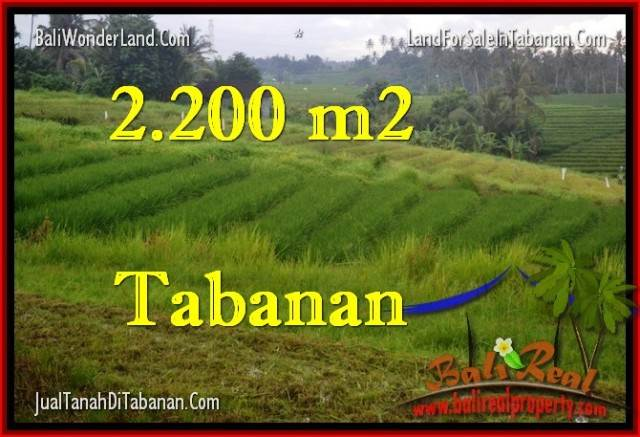 Beautiful 2,200 m2 LAND SALE IN TABANAN BALI TJTB269