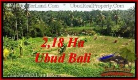 Beautiful 21,800 m2 LAND FOR SALE IN Sentral Ubud TJUB546