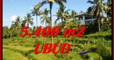 5,400 m2 LAND IN UBUD BALI FOR SALE TJUB550
