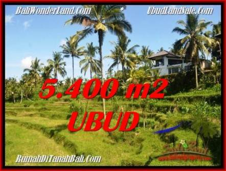5,400 m2 LAND IN UBUD BALI FOR SALE TJUB550