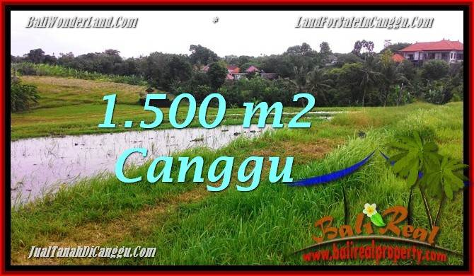 Magnificent PROPERTY 1,500 m2 LAND IN Canggu Batu Bolong FOR SALE TJCG198