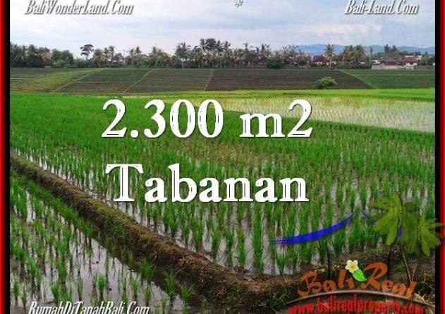 Magnificent PROPERTY TABANAN LAND FOR SALE TJTB263