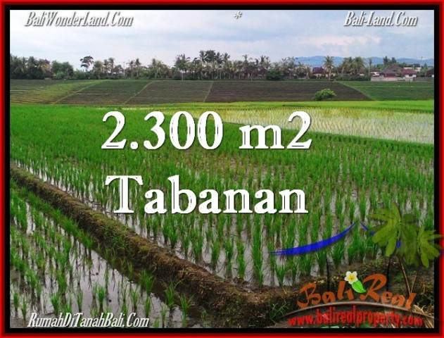 FOR SALE Magnificent LAND IN Tabanan Selemadeg BALI TJTB263