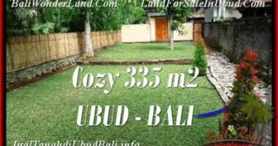 Affordable LAND SALE IN Ubud Tegalalang BALI TJUB537