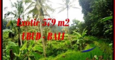 FOR SALE Exotic LAND IN Ubud Tegalalang BALI TJUB538