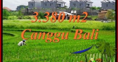Beautiful PROPERTY LAND IN CANGGU FOR SALE TJCG199