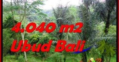 Magnificent PROPERTY 4,040 m2 LAND IN Ubud Tegalalang FOR SALE TJUB555
