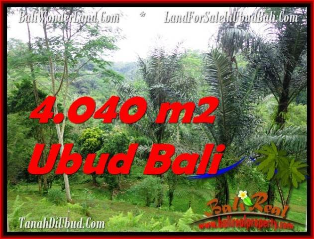 Beautiful 4,040 m2 LAND SALE IN UBUD BALI TJUB555