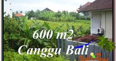FOR SALE Magnificent PROPERTY LAND IN Canggu Brawa BALI TJCG206