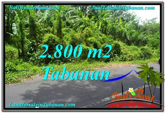 FOR SALE Affordable 2,800 m2 LAND IN TABANAN TJTB300