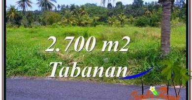 Affordable PROPERTY 2,700 m2 LAND SALE IN TABANAN BALI TJTB301