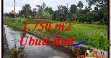 715 m2 LAND FOR SALE IN UBUD BALI TJUB557